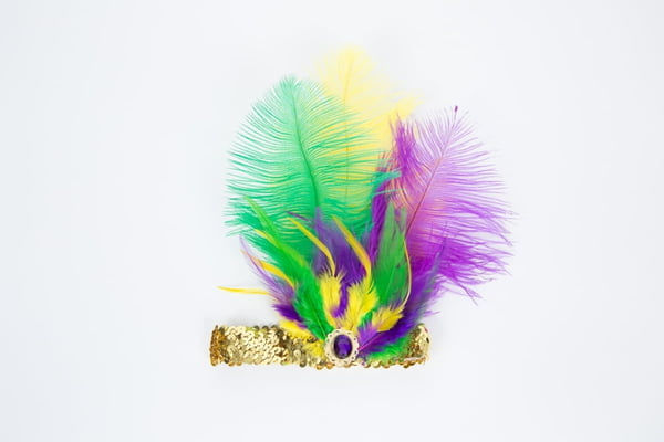 Elastic Headband w/Ostrich Feather